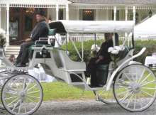 white wedding horse carriage rental baton rouge clinton la louisiana